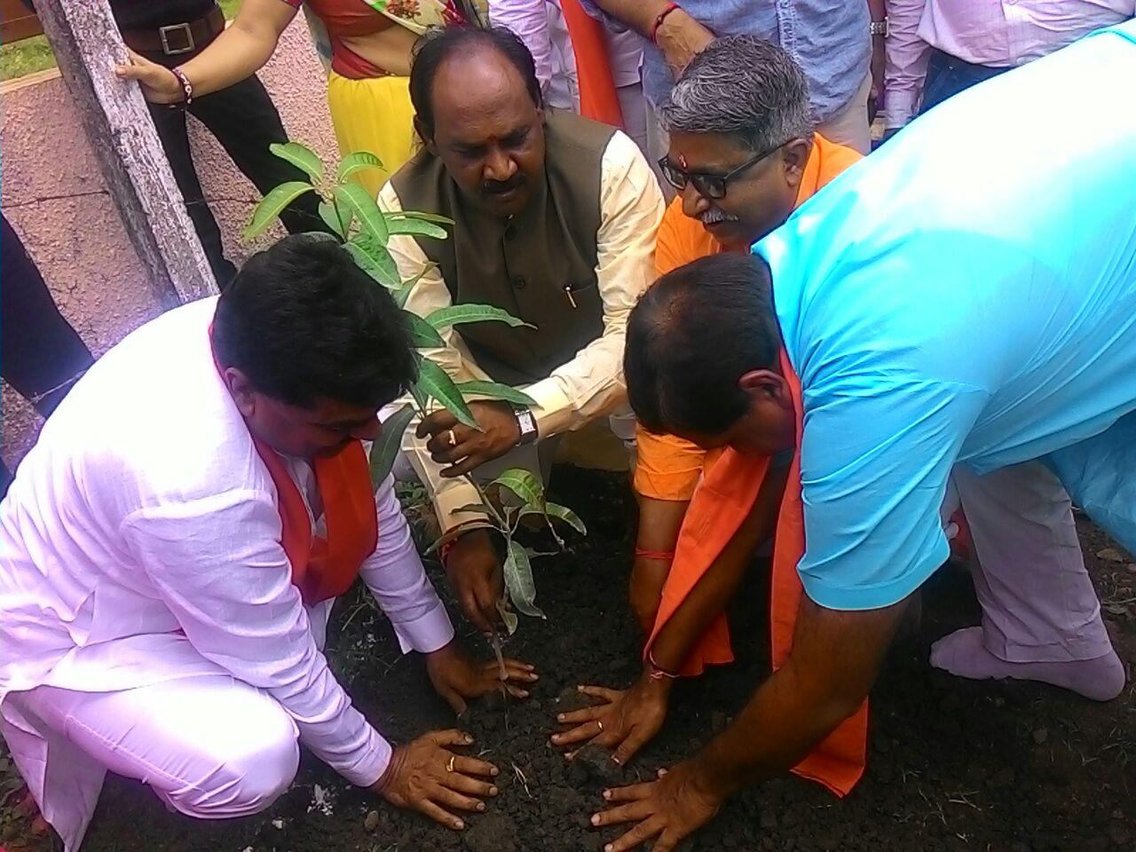 Madhya Pradesh plantation program